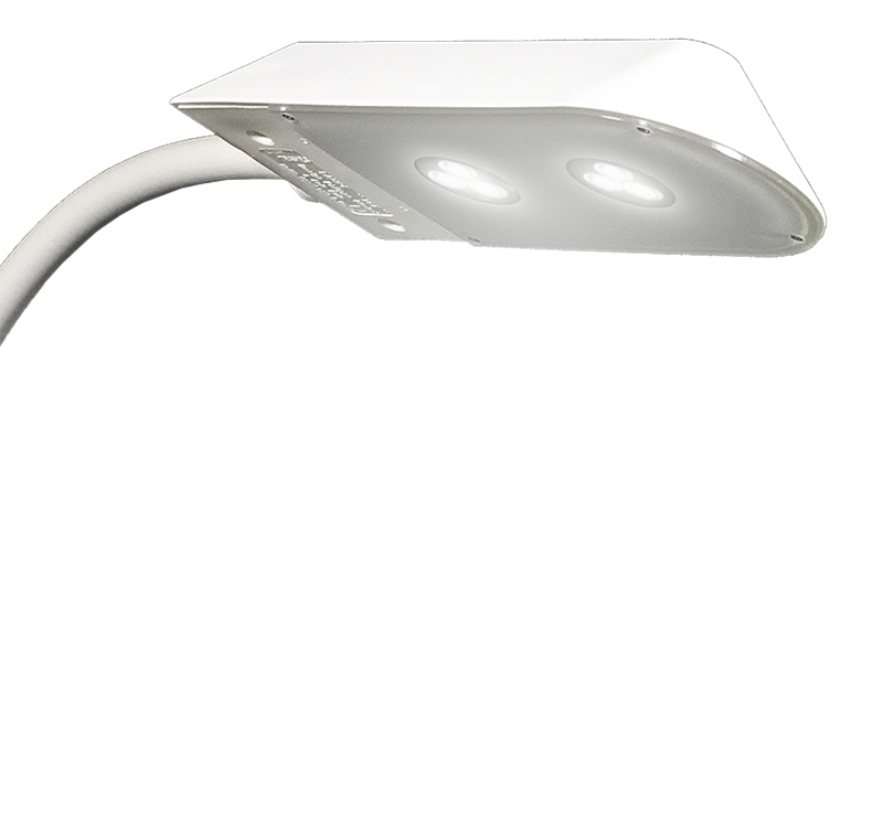 FLORALED lampe led médicale éclairée